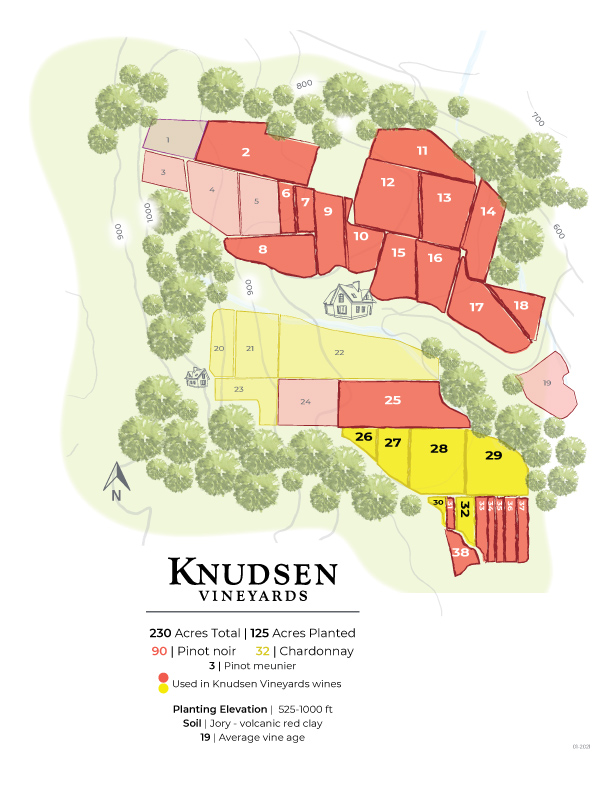 map of knudsen vineyards illustrating the various vineyard blocks by grape variety